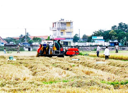 Khanh Hoa develops rural areas hinh anh 1
