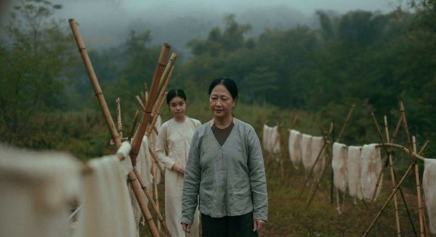 Vietnamese films to be screened at Cannes Film Festival 2017 hinh anh 1
