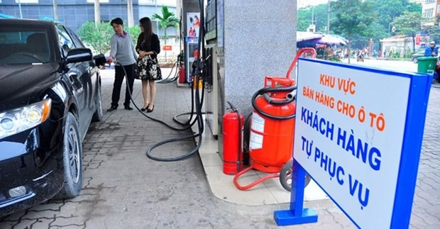 Obstacles hinder automated petrol stations hinh anh 1