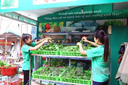 Conference seeks to perfecting mechanisms towards sustainable agriculture hinh anh 1