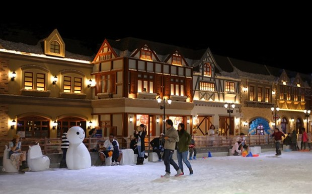 Snow Town offers cool new amusement in HCM City hinh anh 1