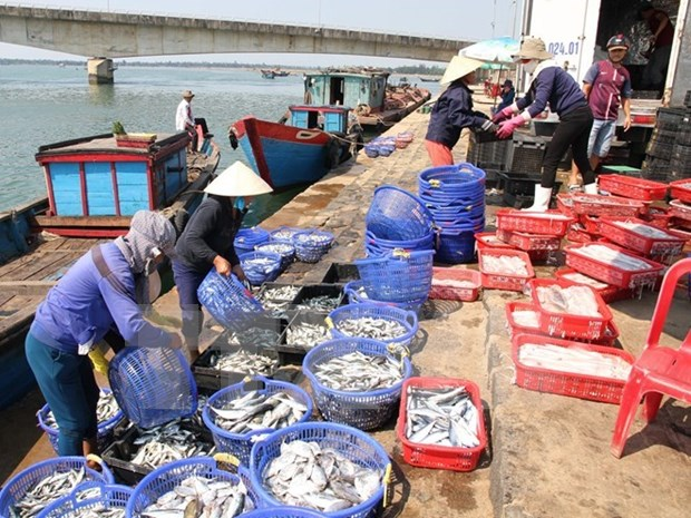 Agro-forestry-fishery exports hit 7.6 billion USD in Q1 hinh anh 1