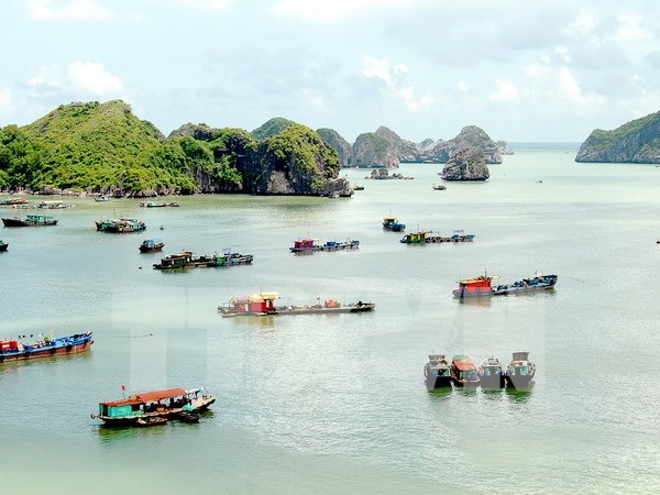 Hai Phong greets 1.32 million tourists in Q1 hinh anh 1