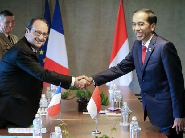Indonesia, France pledge stronger cooperation in various fields hinh anh 1
