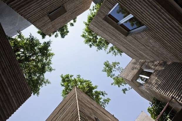 Vietnamese architect wins major Dutch award hinh anh 1