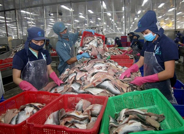 Unsafe produce hurting exports hinh anh 1