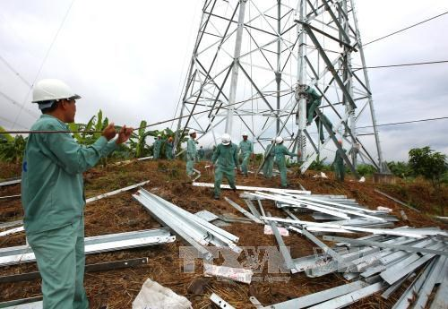 Vietnam to ensure power supply for APEC 2017 hinh anh 1