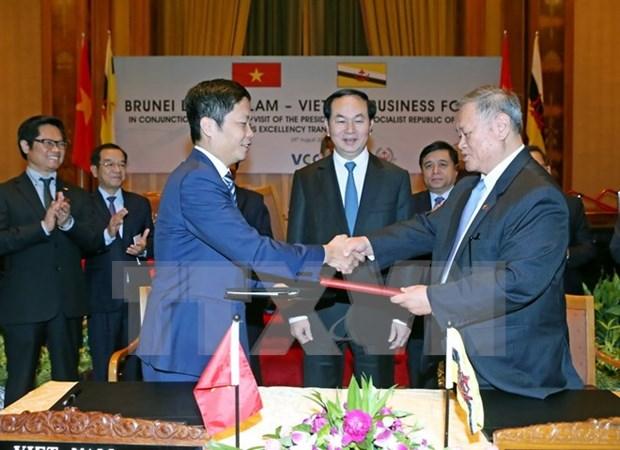 Vietnam, Brunei develop trade relations hinh anh 1