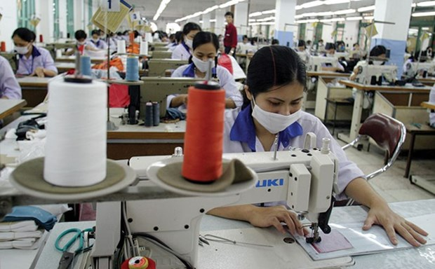 Vietnamese apparel firms avoid stock market for now hinh anh 1