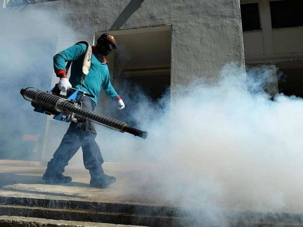 New Zika cluster detected in Singapore hinh anh 1