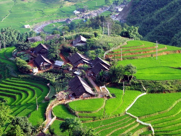 Homestay cluster in Lao Cai grabs ASEAN award hinh anh 1