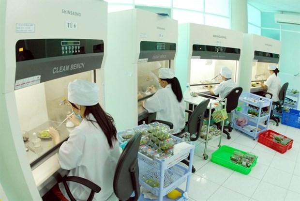 Vietnam's farm firms seek high-tech hinh anh 1