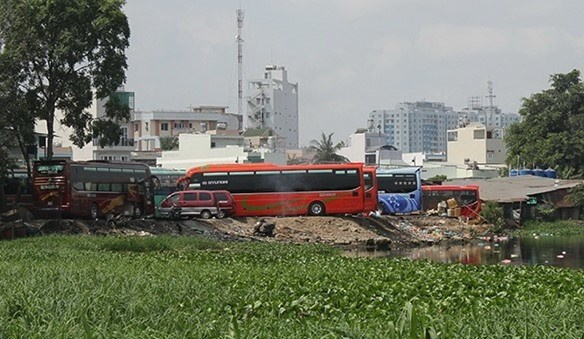 HCM City to crack down on illegal buses, stations hinh anh 1