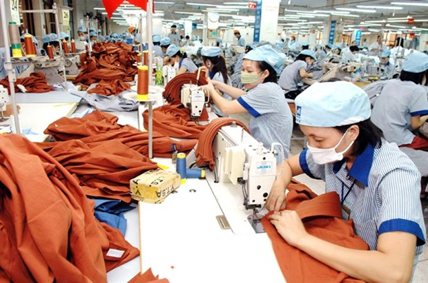Rising import value causes rates to fluctuate: NFSC hinh anh 1
