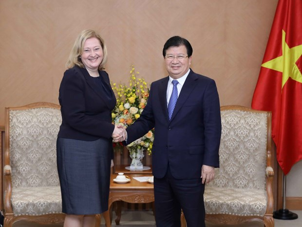 Deputy PM receives Russian, Irish ambassadors hinh anh 2