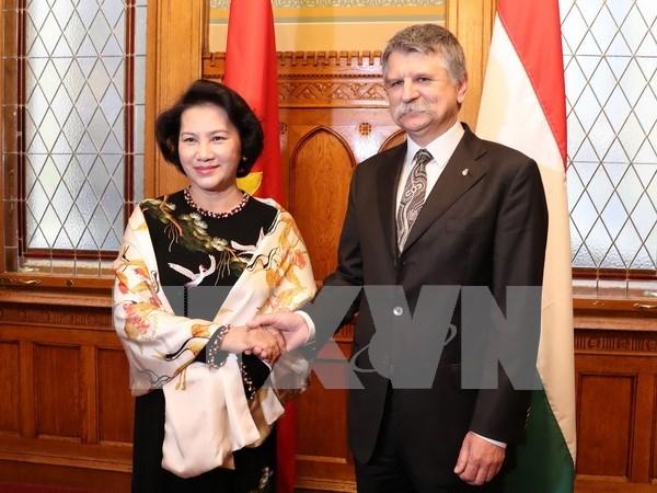 Vietnamese, Hungarian legislators discuss law perfection hinh anh 1