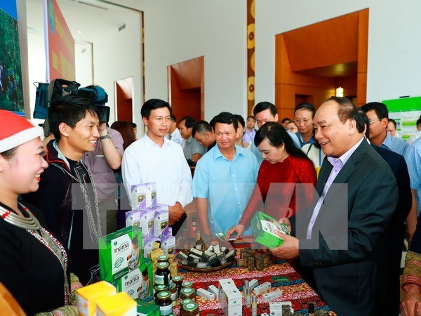 Herbal medicine hoped to be part of economic development priorities hinh anh 1
