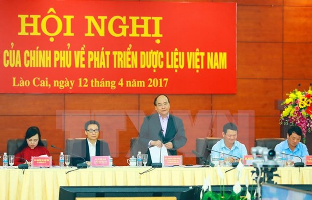 Solutions sought to develop herbal medicinal materials hinh anh 1