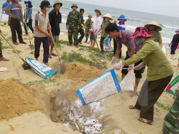 Inspection Commission announces outcomes of 13th session hinh anh 1