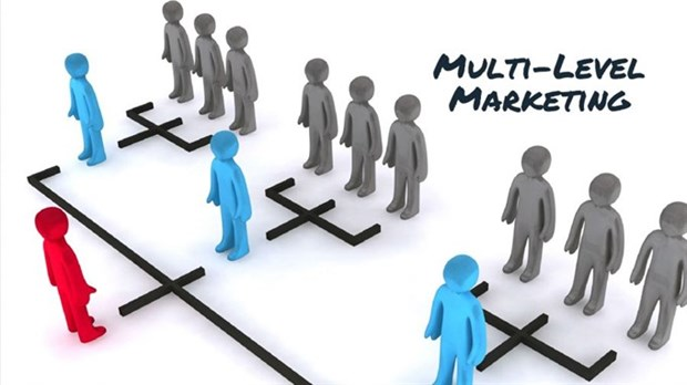 Number of multi-level marketing businesses drop to half hinh anh 1