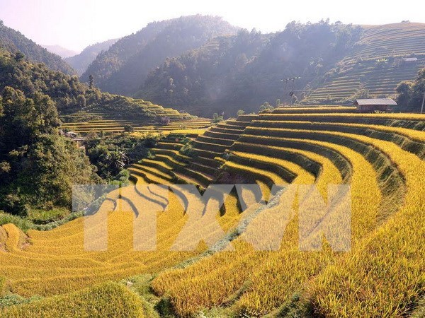 Yen Bai gears up for Vietnam Tourism Year 2017 hinh anh 1