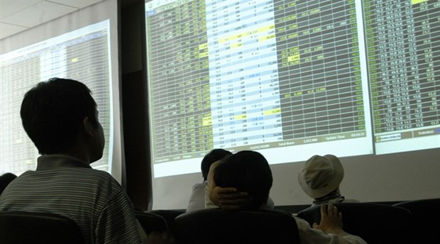 Stocks fall on investor worries hinh anh 1