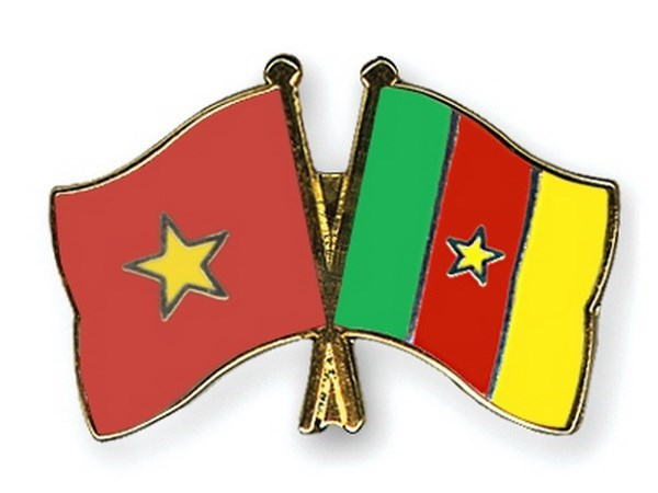Vietnam bolsters partnership with Cameroon hinh anh 1