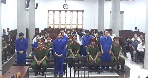Eleven jailed for fake multi-million-USD afforestation project hinh anh 1