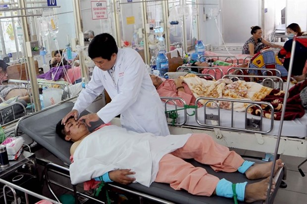 HCM City orders improved emergency treatment hinh anh 1