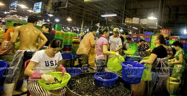 HCM City boosts international cooperation in expanding Binh Dien market hinh anh 1