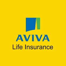UK insurer takes full ownership of life insurance joint venture hinh anh 1
