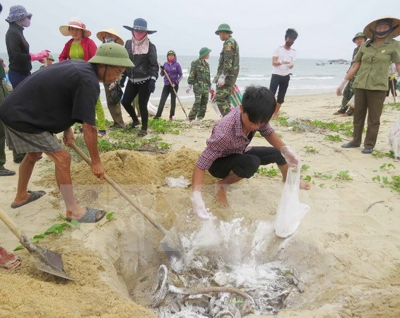 Deputy PM urged central localities to complete compensation to locals hinh anh 1