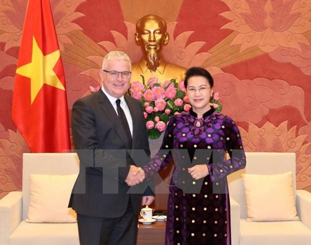 NA leader receives Australian, New Zealand ambassadors hinh anh 1