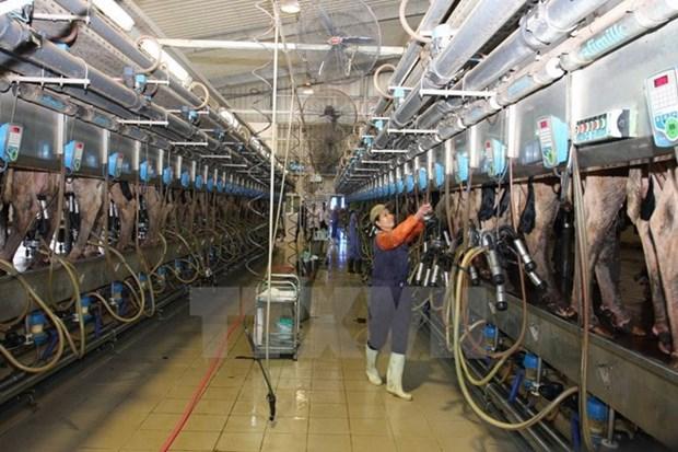 Bashkortostan seeks more investment from Vietnam hinh anh 1