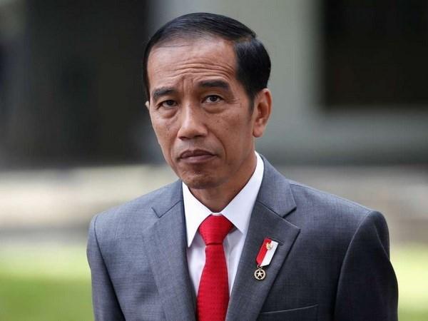Indonesian President to visit Hong Kong hinh anh 1