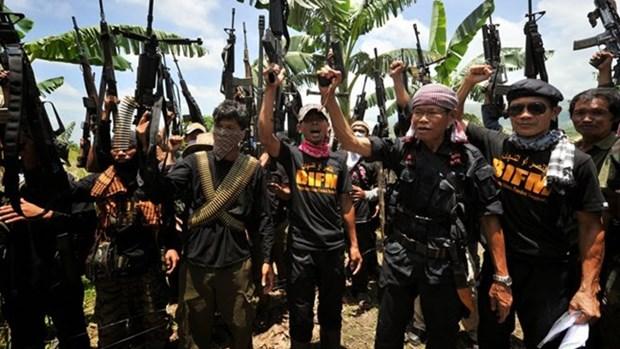Jemaah Islamiyah militant group regains strength: experts hinh anh 1