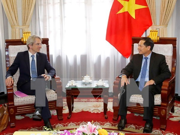Deputy FM: Vietnam treasures relations with France hinh anh 1