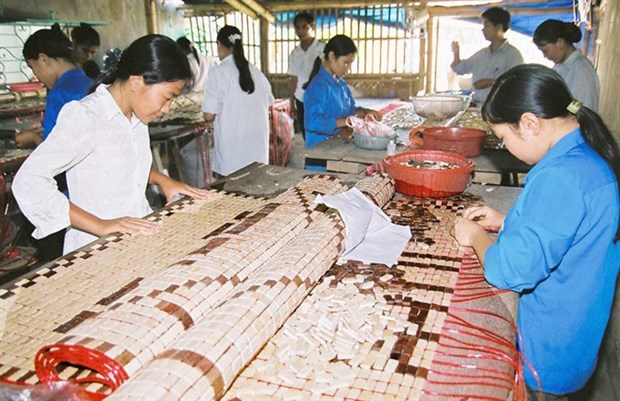 Household firms fear red tape hinh anh 1