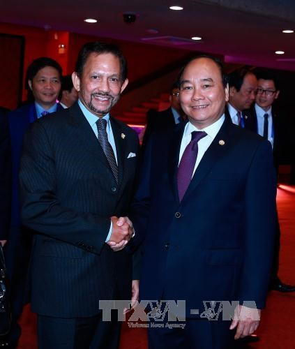 Vietnam, Brunei leaders agree to foster cooperation hinh anh 1