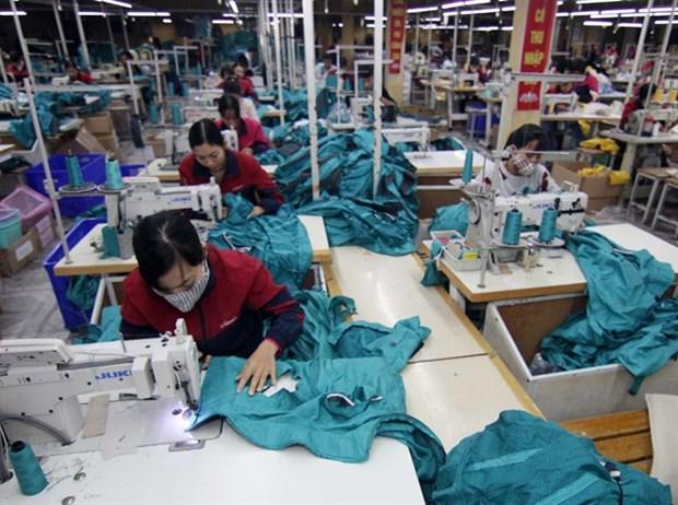 Garment exports grow despite hurdles hinh anh 1
