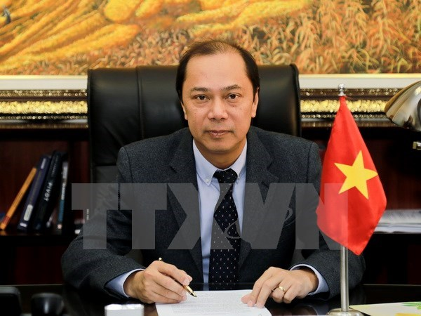 Vietnam contributes to ASEAN Summit's success: diplomat hinh anh 1