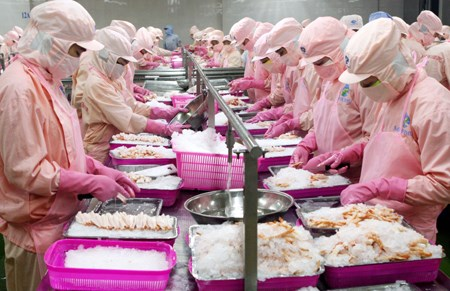 US extends antidumping duties on shrimp imports from Vietnam hinh anh 1