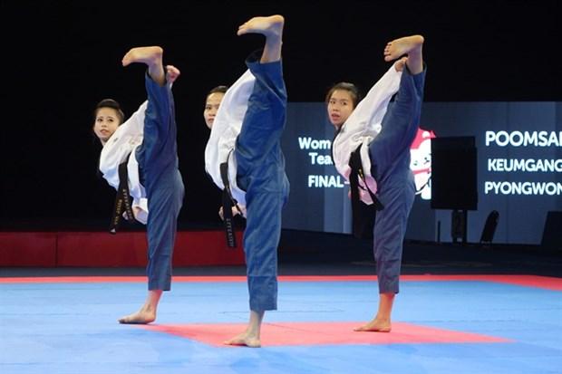 Taekwondo stars to compete on Greek beach hinh anh 1