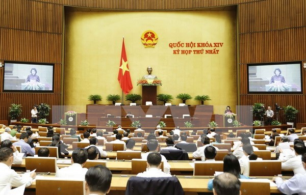 National Assembly contributes to sustainable development hinh anh 1