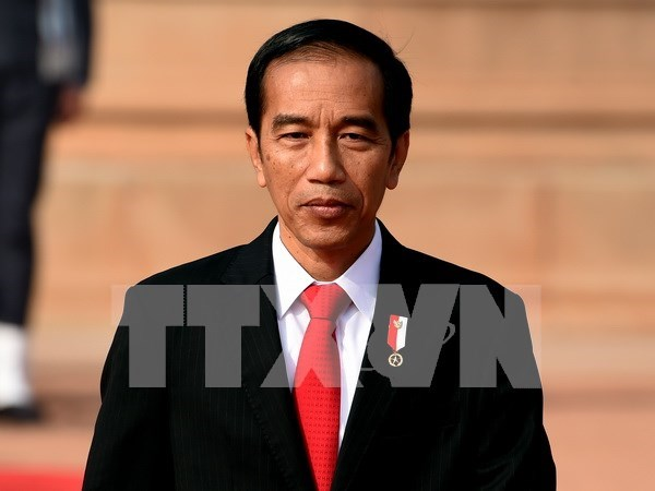 Indonesian President orders dissolution of HTI Islamic Group hinh anh 1
