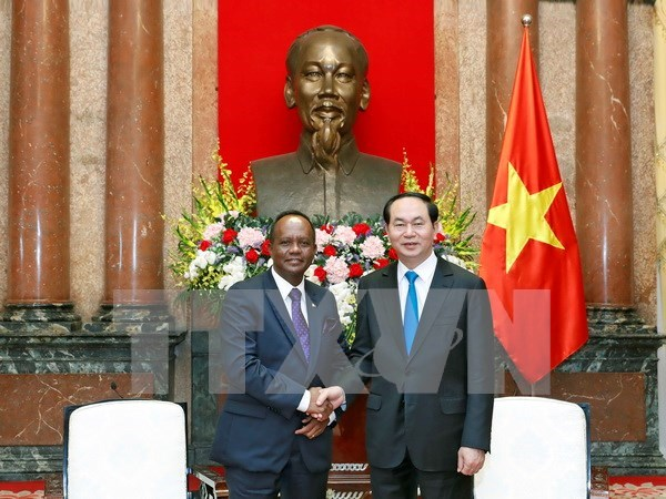 Vietnam looks to boost agriculture ties with Madagascar hinh anh 1
