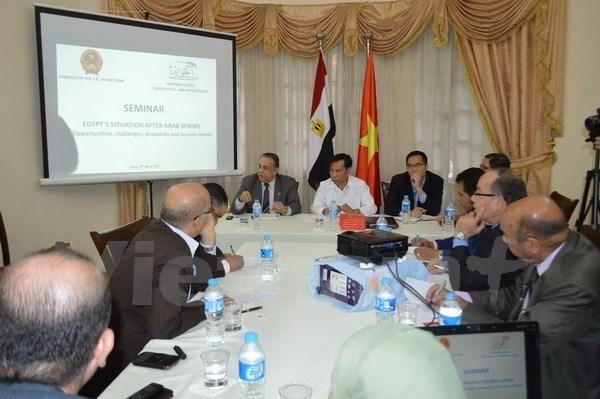Seminar talks prospect of Vietnam-Egypt ties in Cairo hinh anh 1