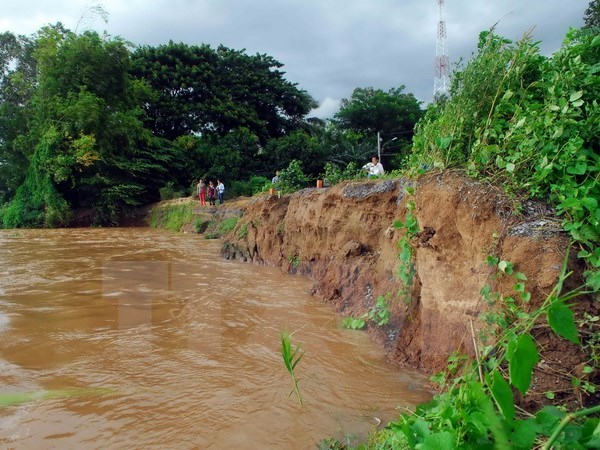 Dong Thap forecast to suffer more landslides this year hinh anh 1