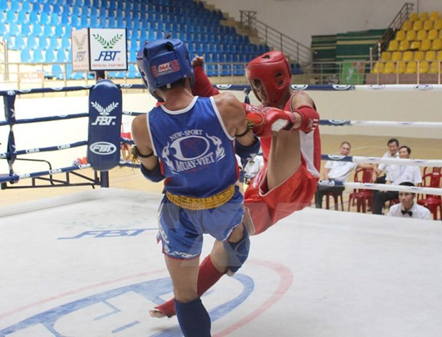 Vietnam's Muaythai fighters win two gold medals at world champs hinh anh 1