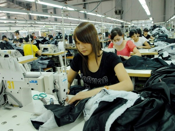Vietnam, India look to boost garment and textile cooperation hinh anh 1